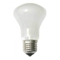 Lamp 100 W/196V E27